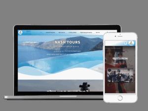 Ny-Digital בנייה וקידום אתרים פרוייקט נאש טורס